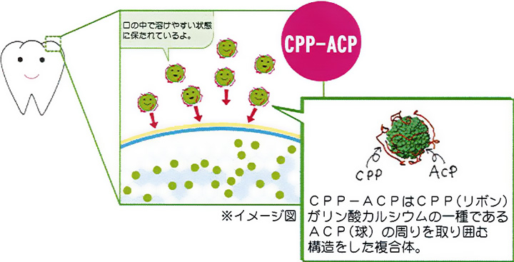 cppacp