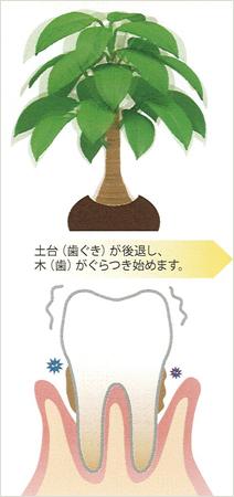 susumikata02