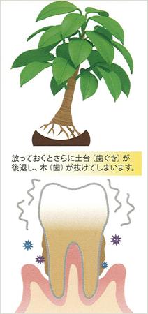 susumikata03